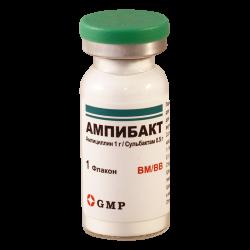 Ampibact 1.5g #1fl GMP