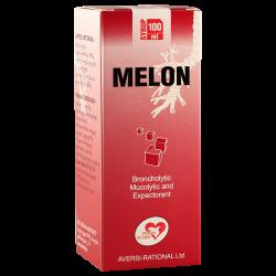 Мелон 100мл сироп фл