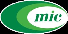 MINSKINTERCAPS